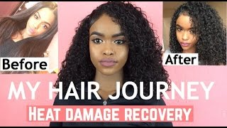 MY NATURAL HAIR JOURNEY & HEAT DAMAGE RECOVERY | HALSSA
