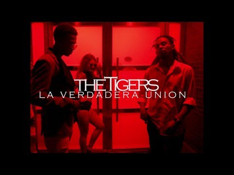 THE TIGERS - ATRÁPAME (Prod. Alvo Lorem )[Vídeo Official]