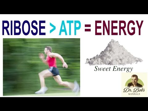Video RIBOSE Produces ATP = Energy