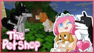 THE PET SHOP! Ep.1 The Two Stray Dogs | Minecraft ROLEPLAY