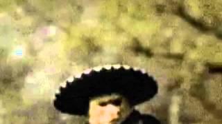Daft Punk   Get Lucky Feat. Pharrell Williams (Mexican Monkey Version)