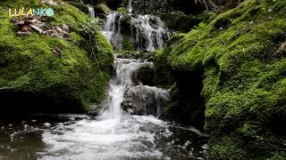 Zvuk vody bíly šum pre dojčatá, kolikou