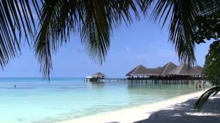 preview picture of video 'モルジブ メドゥフシアイランド (Medhufushi Island Resort) Short Edit'