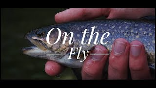 The Great Smoky Mountains: On The Fly - Cinematic Fly Fishing Adventure