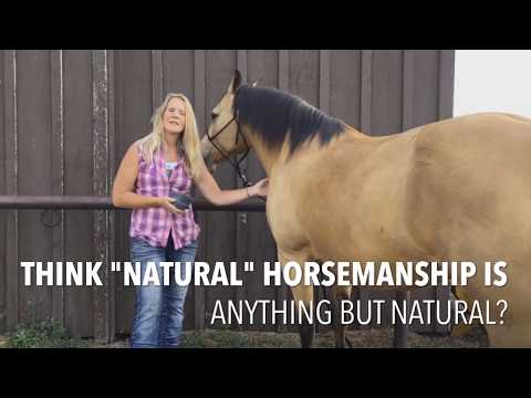 Holistic Horsemanship Certification Course - YouTube