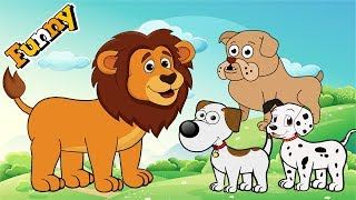 Dogs Cartoons for Children Full Episodes - Funny Animals Cartoons For Children - Cutedog, Lion