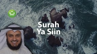 Gambar cover Surah YASIN Merdu dan Menyejukkan - Mishari Rasyid Al-Afasy