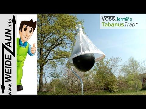 Aufbau der Tabanus Trap Bremsenfalle von VOSS.farming