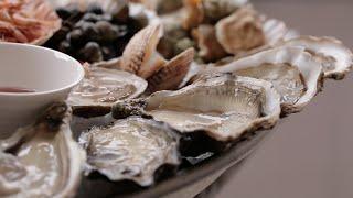Les huîtres par un vice-champion du monde des écaillers Video Preview Image