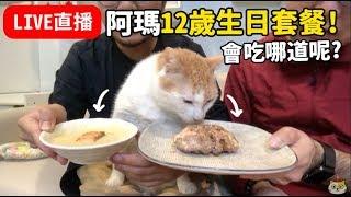 [黃阿瑪的直播]阿瑪12歲生日套餐!會吃哪道呢?