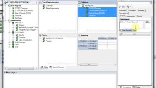 SAP Query Design using Bex