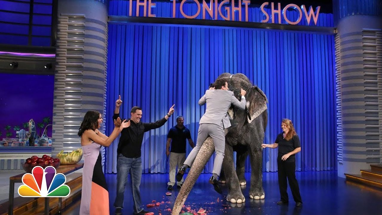 Jeff Musial Introduces Jimmy to an Elephant thumbnail