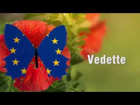 VEDETTE, Vers une EcoDEstination TransfronTalière d'Excellence Dunes de Flandre