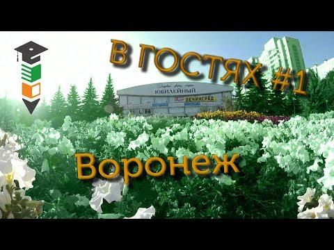 В гостях #1 Ищем кота Василия в Воронеже
