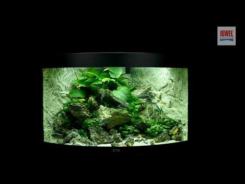 Juwel Aquarium Trigon 190 Einrichtungsbeispiel / Tutorial
