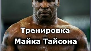 Бокс, Тренировка Майка Тайсона