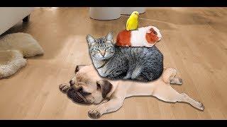 Me and my strange friend / Я и мой странный друг - Video Youtube