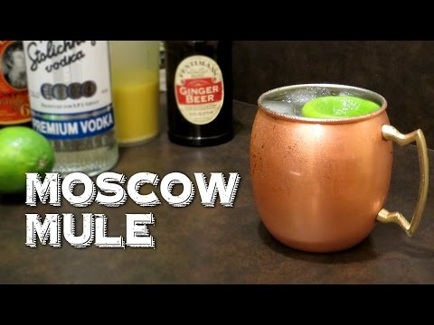 Moscow Mule – The Classic Highball of Vodka Lime and Ginger Beer