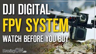 DJI Digital FPV System OR Fat Shark Byte Frost - WATCH BEFORE YOU BUY (Buyers Guide)