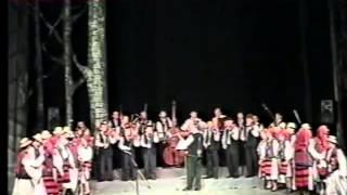 Spectacol aniversar 2005 Scoala de arte Liviu Borlan Baia Mare - II