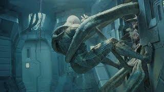 揭秘异形宇宙的全局脉络,归纳异形家族12大物,每种都有致命威胁
