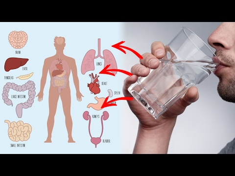 Video 10 Health Benefits of Drinking Warm Water | Natural Cures