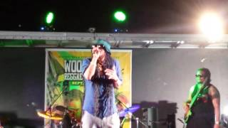 Maxi Priest @ Woodbine Reggae Festival 2016 sound provided by Stargate Sound & Light