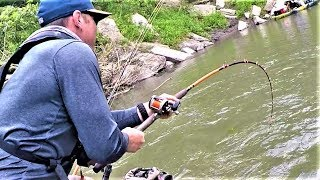I caught an ENORMOUS catfish out of a TINY creek! (Adventure)