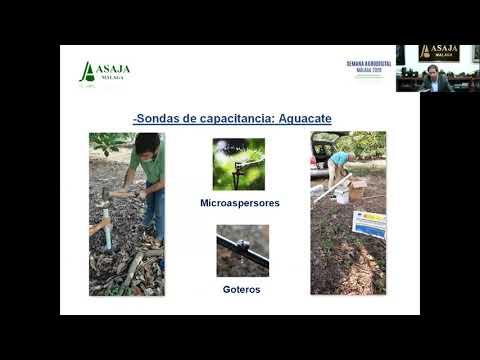 Agrodigital 2020 | Control de humedad y clima en suelos agrícolas mediante diferentes metodologías