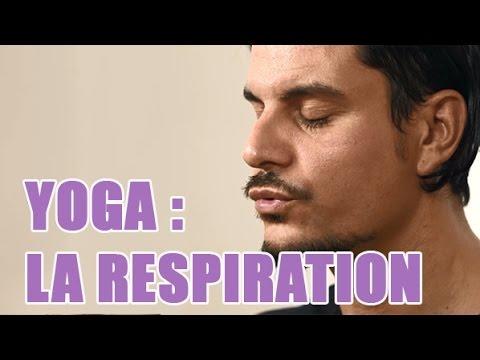 Cours de yoga : tout savoir sur la respiration consciente