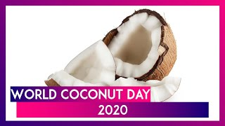 World Coconut Day 2020: Here Are Five Reasons to Have This Fruit - Download this Video in MP3, M4A, WEBM, MP4, 3GP
