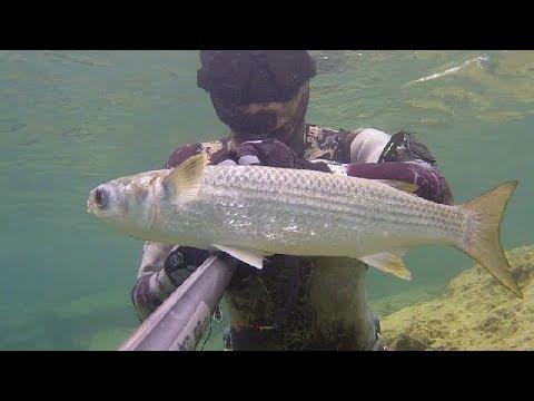 La pesca sul lago in profondità larea vyshnevolotsky