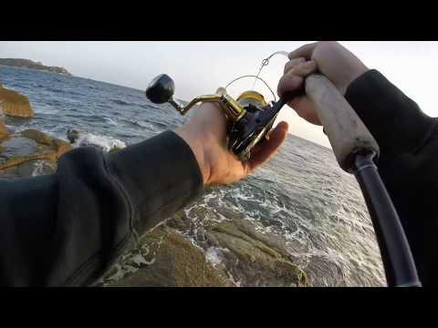 Aprile 2017 da pesca di video