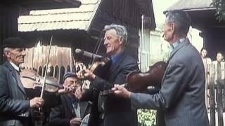 Terchovská muzika