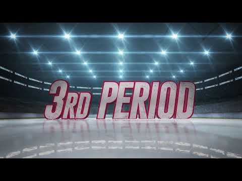Griffins vs. IceHogs | Mar. 1, 2019