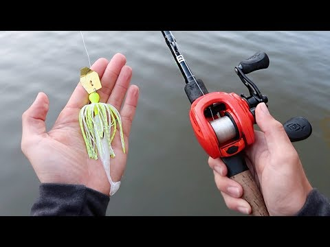 You Want To Catch BIG Bass? THROW THIS! (Bass Fishing Tips)