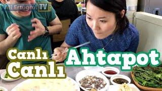 Güney Kore Balık Pazarı ve Canlı Ahtapot