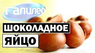 Галилео | Шоколадное яйцо 🍫🥚 [Chocolate egg]