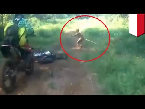 Human Or Not? Mysterious Creature Caught On Camera Running Out Of Indonesian Jungle - TomoNews