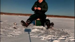 Рыбалка на шакше осенью 2020