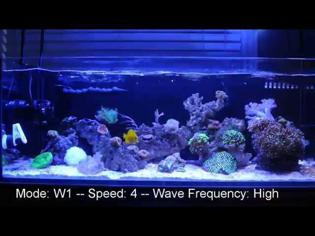 Jebao RW-8 Flow On A 3 Foot Reef Tank