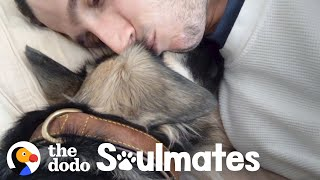 Scared Rescue Dog Slowly Falls In Love With Her New Dad | The Dodo Soulmates by The Dodo
