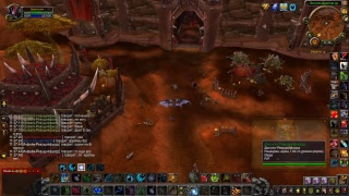 World of Warcraft PvP and PVE DH Dru and .....