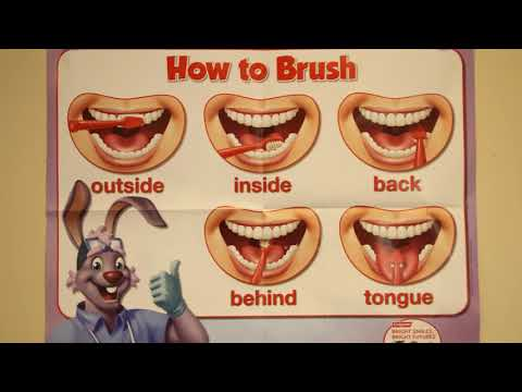 Head Start Table Brushing Instructional Video - Preschool Oral Health and Toothbrushing