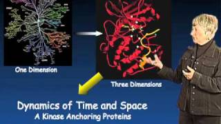 Susan Taylor (UCSD) Part 3: Protein Kinase Regulation and Localization