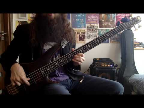 Vampire Weekend - Sunflower Ft. Steve Lacy (Bass Cover) [Pedro Zappa] - Beard & Bass RuleZ