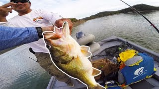 THE BIGGEST BASS OF MY LIFE - 19LBS IN 2 CASTS!!