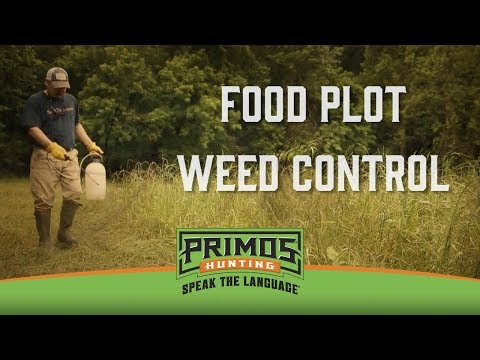 Food Plot Weed Control video thumbnail