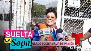 ¿Juan Collado podría salir de prisión y Yadhira Carrillo no está enterada? | Suelta La Sopa