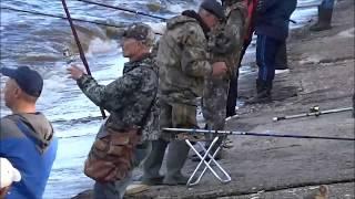Рыбалка на каме чехонь в мае